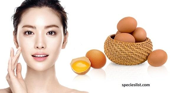 Trứng gà – Bí quyết làm trắng da mặt nhanh nhất